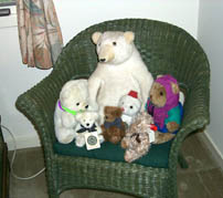 T.Bear, Hastings, Hayden, Hoffi, Junior, Radcliffe, C.Bear