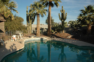 Pool and Saguaro