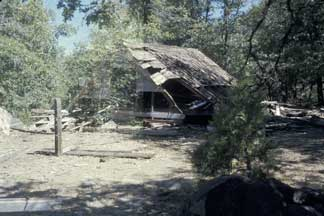 Old Cabin on Thompson's Meadow, 1977