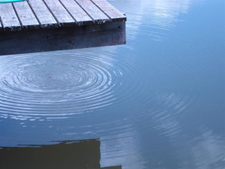 Ripples - photo by Dave Norton. Click photo for larger image.