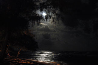 DSC_0790.jpg Ghost Moon ... Click image for larger file.